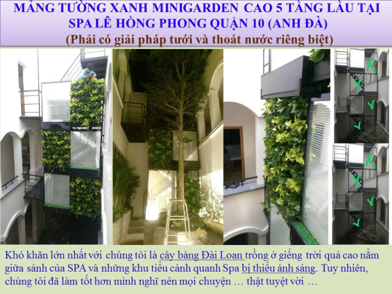 Thi-cong-tuong-dung-tieu-canh-Spa-29-768x576