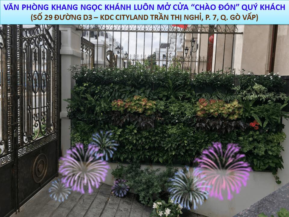 cong-ty-khang-ngoc-khanh-44