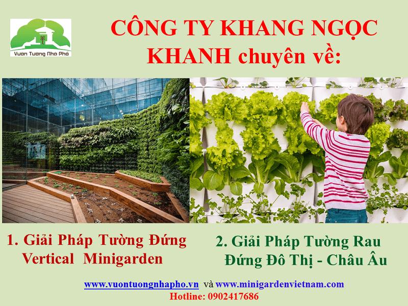 cong-ty-khang-ngoc-khanh1
