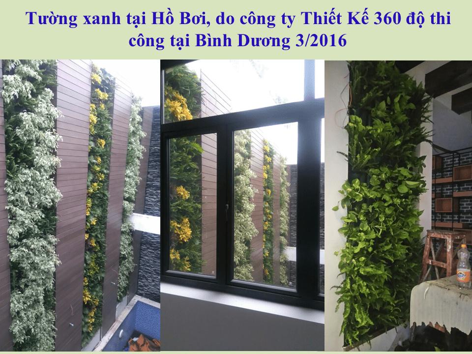 thi-cong-tuong-dung-ho-boi-17