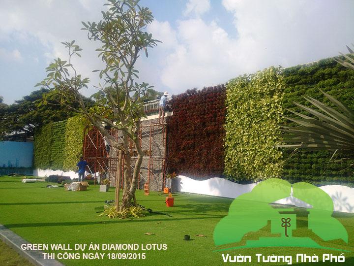 thi-cong-vuon-tuong-nha-pho-minigarden-0