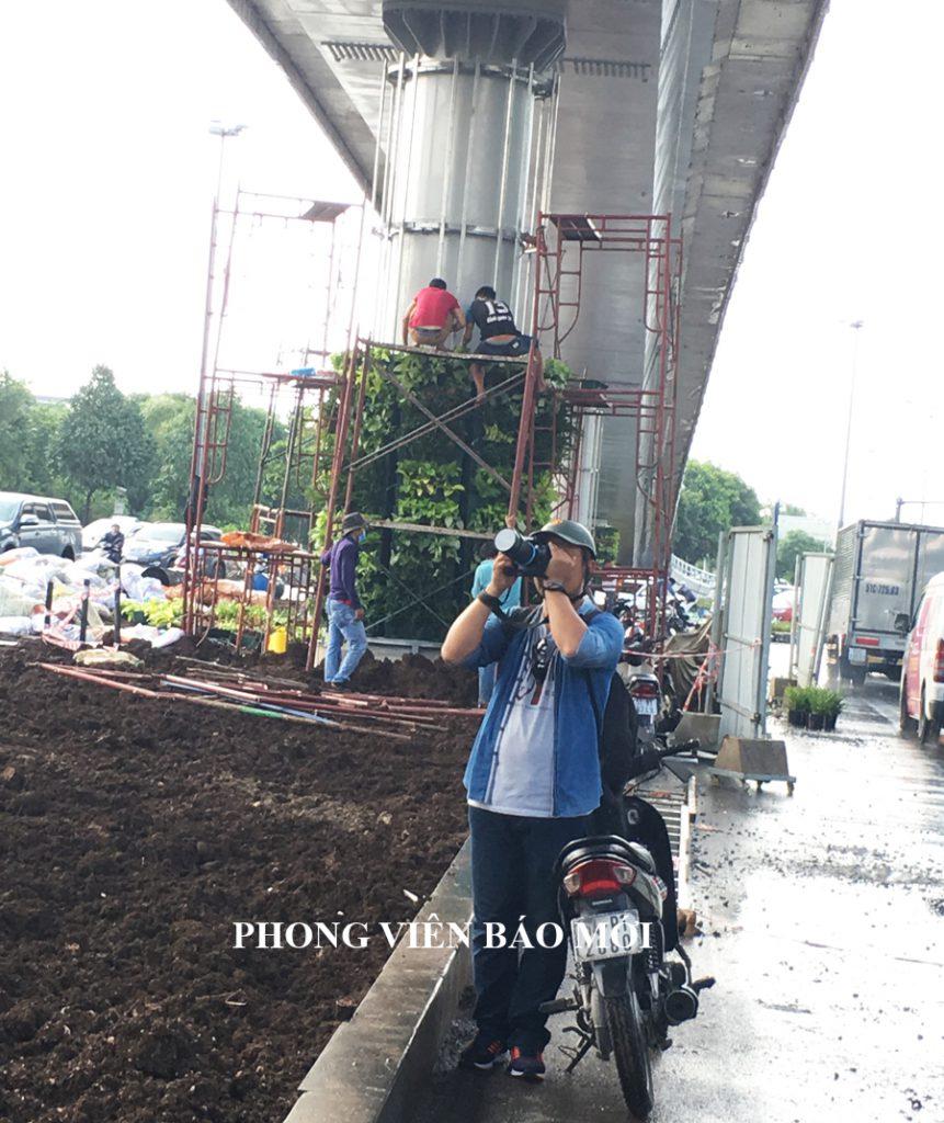 tuong-xanh-dung-tru-cau-vuot-thep-san-bay-bao-moi-861x1024