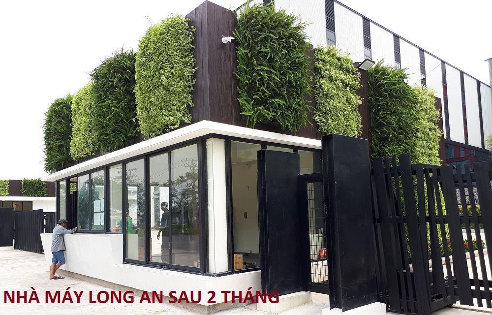 tuong-xanh-dung-minigarden-nha-may-long-an 27